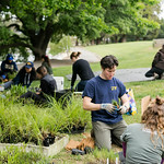 Image of UC Davis students created a new campus landscape.