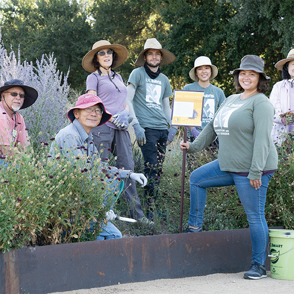 """A group of volunteers at the UC Davis Arboretum and Public Garden"""