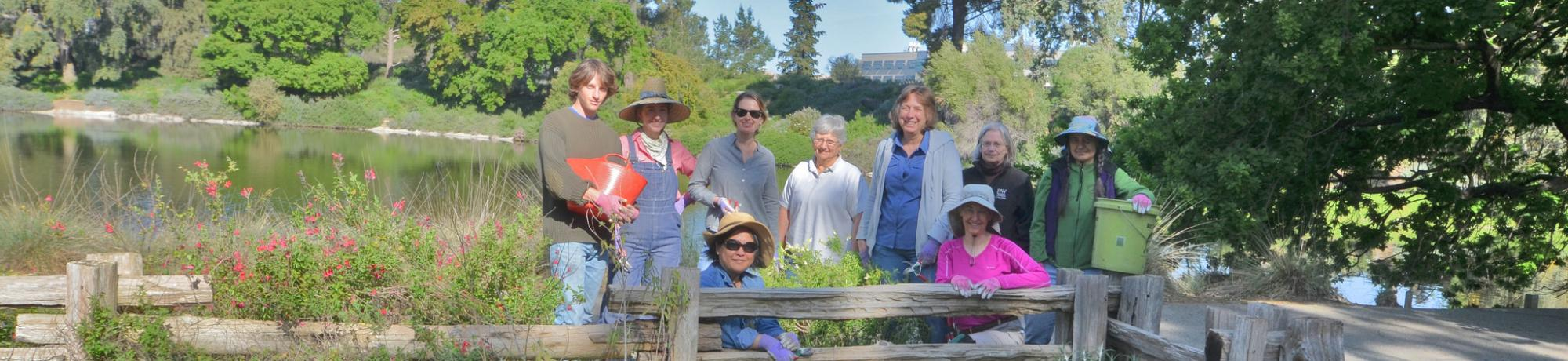 Image of UC Davis Arboretum and Public Garden volunteers gardening in the Arboretum.