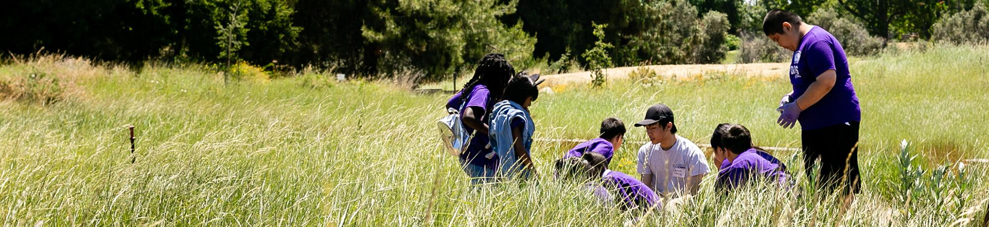 Image of Learning by Leading students teaching elementary school students in the UC Davis Arboretum Environmental GATEway.